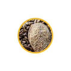 Экстракт семян расторопши пятнистой
