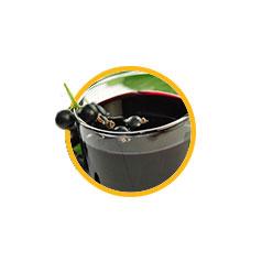 Сок черной смородины